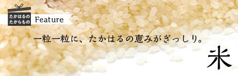 一粒一粒に、たかはるの恵みがぎっしり。米
