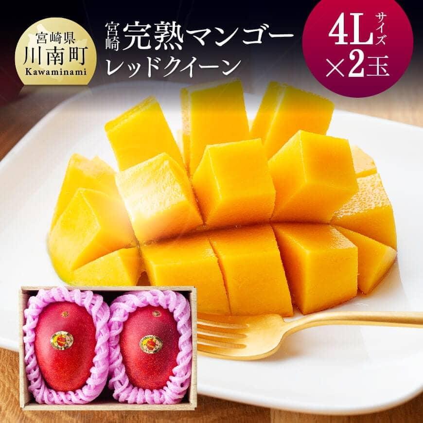 完熟マンゴー『レッドクイーン』2玉×4L