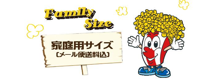 家庭用サイズ