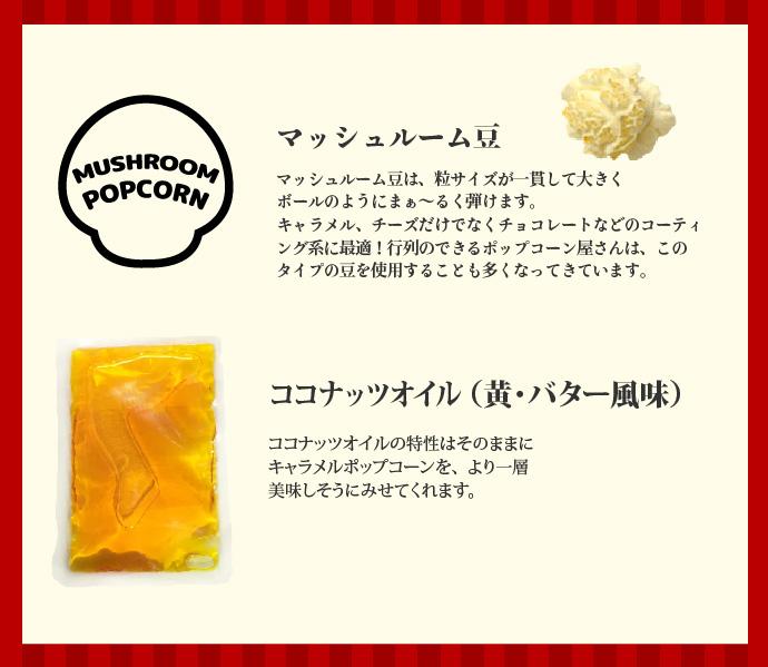マッシュルーム豆とオイル