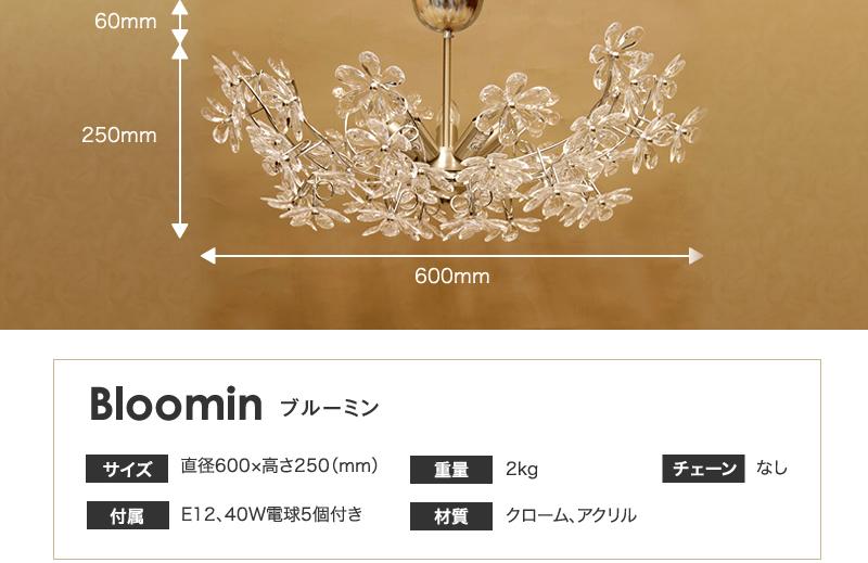 bloomin(�֥롼�ߥ�)
