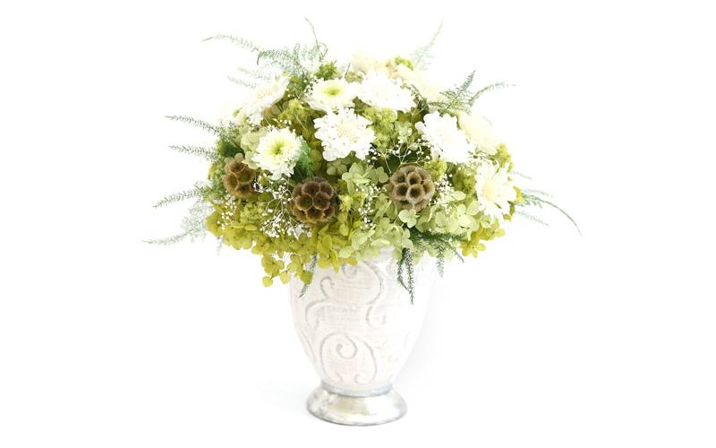 Fine Flower It Is 100 Kotobuki Kotobuki Present Seventy Years