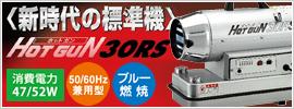 �Ų����� �ۥåȥ��� HOTGUN HG-30RS(�����åȥҡ�����)