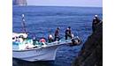 遊漁船(渡船)