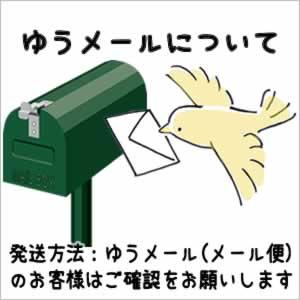 ラッピング・メール便配送 について