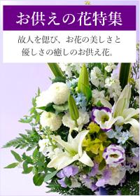 お彼岸に向けたお花の特集