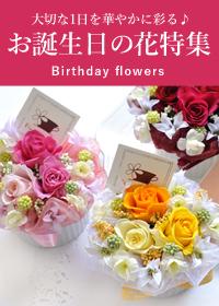 誕生日の花特集