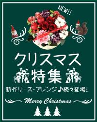 クリスマスのアレンジ・クリスマスリース特集