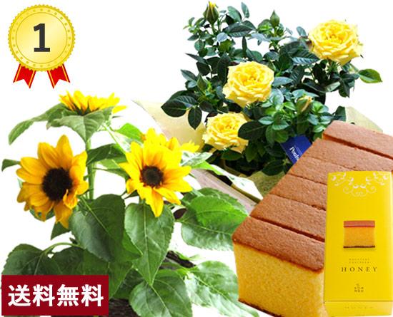 \1位/選べる花鉢&スイーツセット