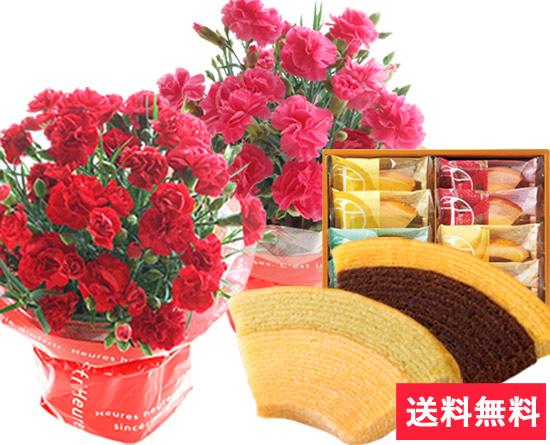 カーネーション花鉢と選べるプレミアムスイーツのセット