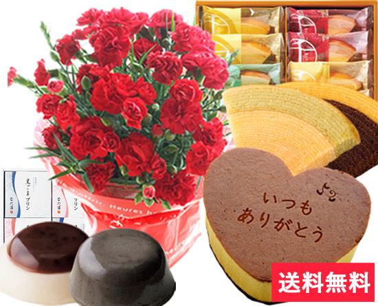 カーネーション花鉢とハートカステラのセット♪ カーネーションの花言葉「純粋な愛」