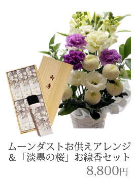 ムーンダスト&淡墨の桜8640