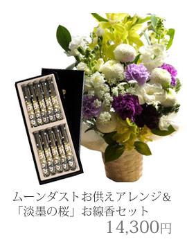 ムーンダスト&淡墨の桜11880