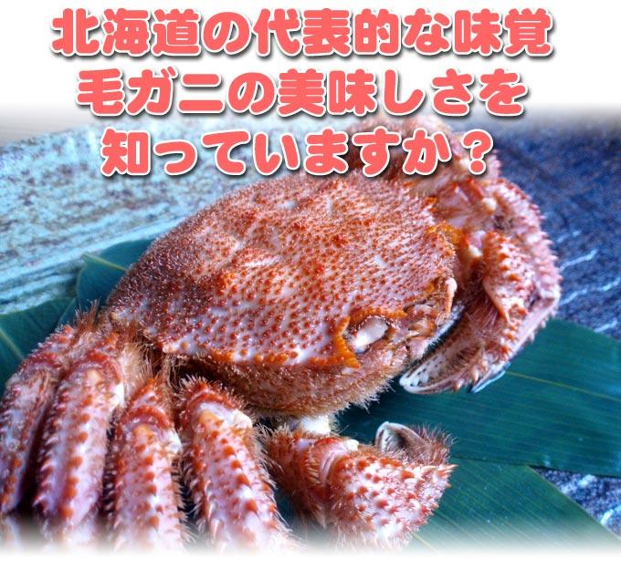 北海道の代表的な味覚 毛ガニの美味しさを知っていますか?