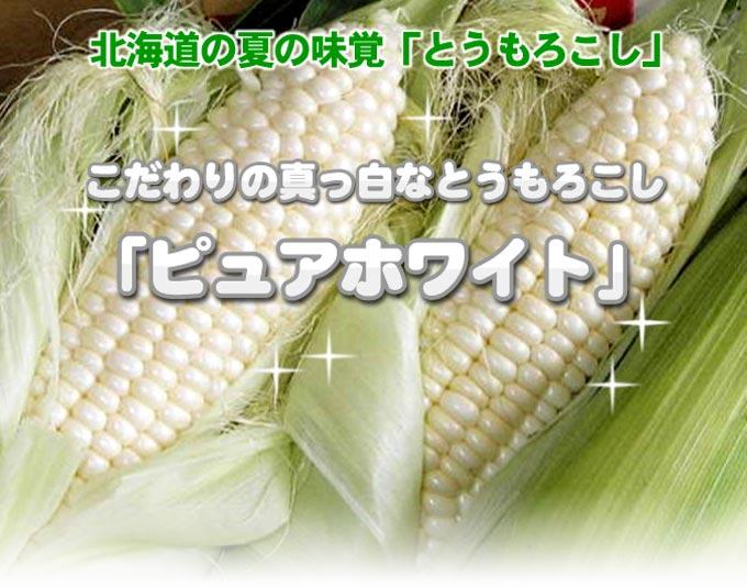 北海道の夏の味覚「とうもろこし」 こだわりの真っ白なとうもろこし「ピュアホワイト」