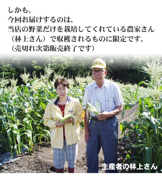 しかも、今回お届けするのは、当店の野菜だけを栽培してくれている農家さん(林上さん)で 収穫されるものに限定です。(売切れ次第販売終了です)
