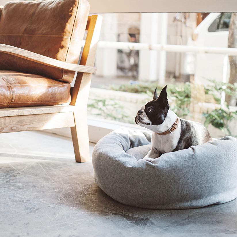 犬用フリースベッド
