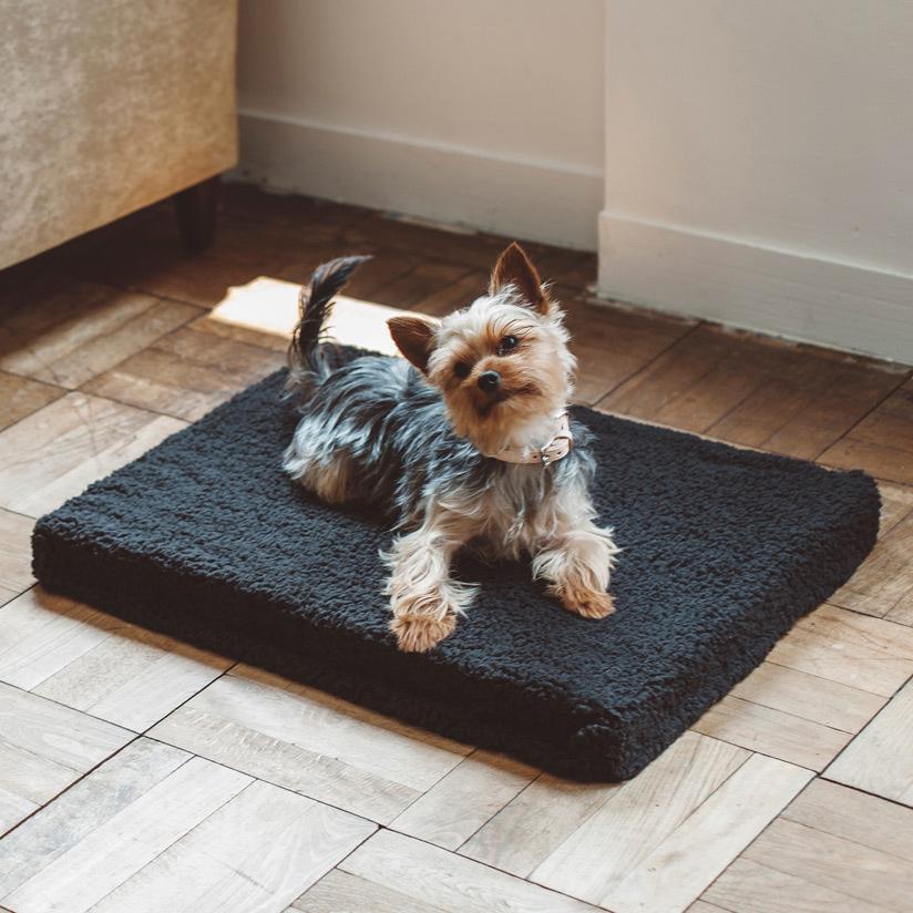 フリーステッチ,犬,ベッド,お洒落,高品質