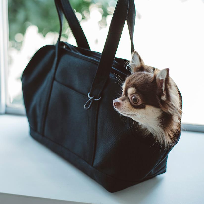 犬 の キャリー バッグ