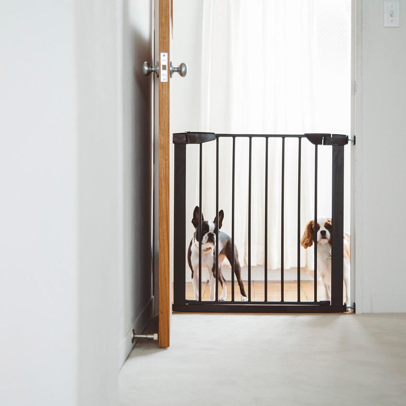 スカンジナビアン,ペットゲート,小型犬