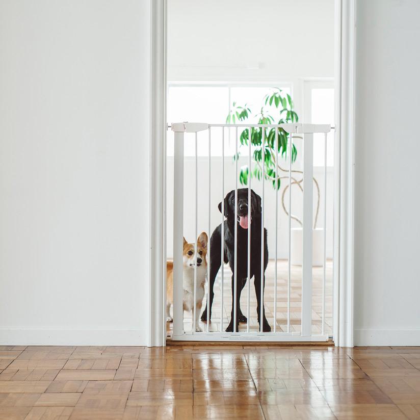 スカンジナビアン,ペットゲート,大型犬