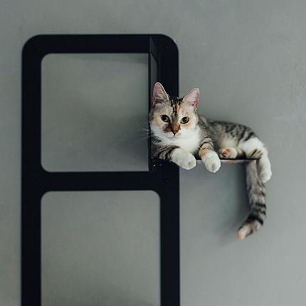 pecolo NEST ペコロ ネスト キャットタワー 猫