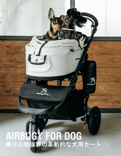 air buggy for dog