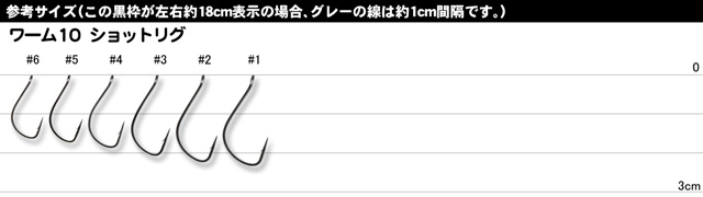 デコイ SHOT RIG WORM10 (ショットリグ ワーム10)