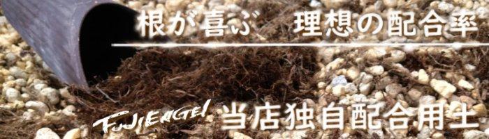 用土・肥料