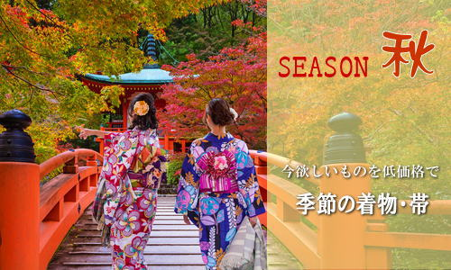 季節の着物・帯 特集
