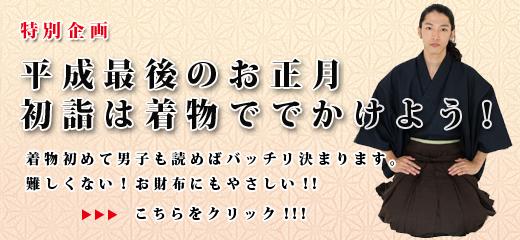 平成最後のお正月。初詣は着物ででかけよう