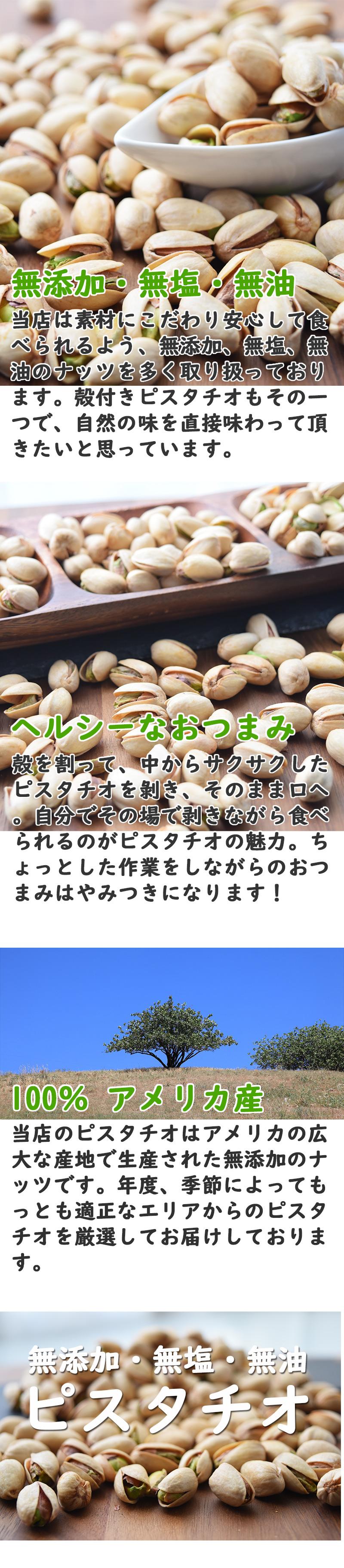 無添加 ピスタチオ 1kg 素焼き 無塩 ローストピスタチオ ページ内容1