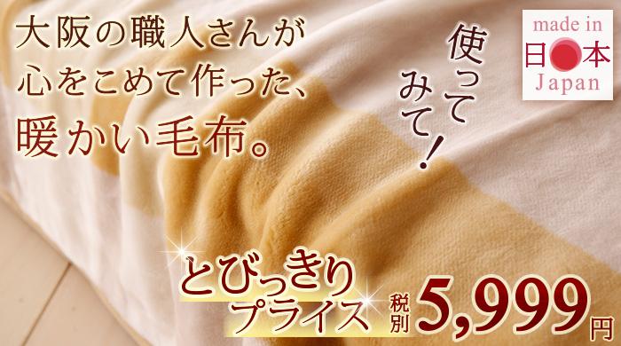 毛布 2枚合わせ シングル 4648 アングル