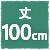 丈100cm