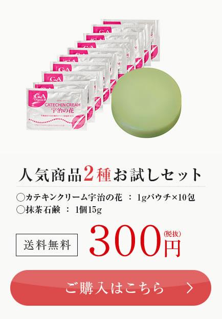 人気2種お試しセット 500円