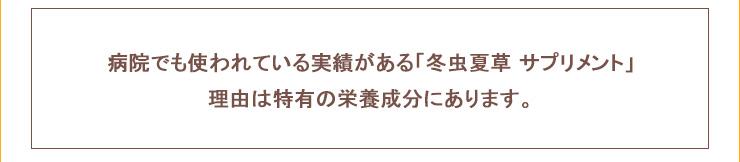 サナギタケ冬虫夏草サプリメント