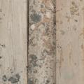 硬いパインの足場板、厚み約35mm