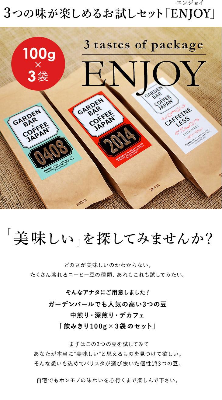 3つの味が楽しめるお試しセット「ENJOYエンジョイ」100g×3袋