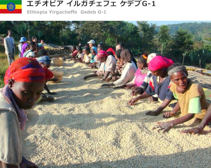エチオピア イルガチェフェ コンガ G-1