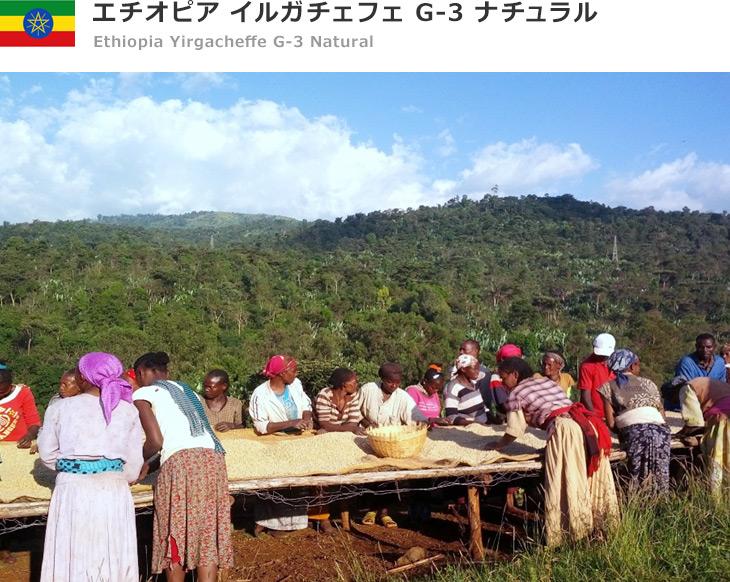 エチオピア イルガチェフェ コンガ G-3 ナチュラル