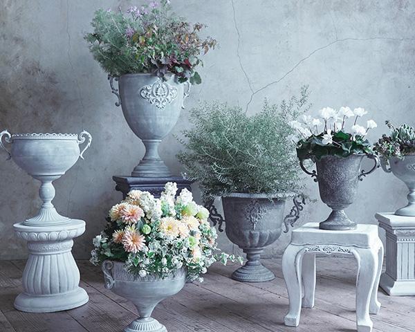 古代ギリシャ&ローマの世界
