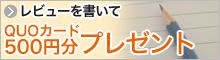 レビューを書いてQUOカード500円分