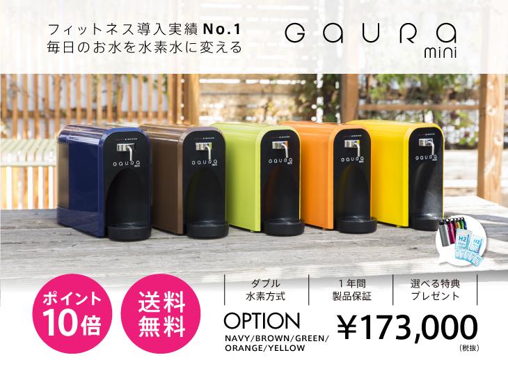 高濃度水素水生成器 GAURA mini(ガウラミニ)オプションカラー