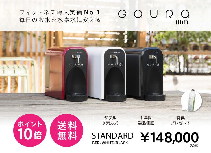 高濃度水素水生成器 GAURA mini(ガウラミニ)標準カラー