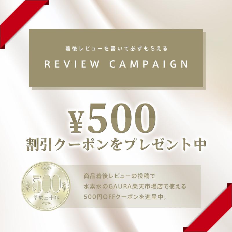 500円割引クーポン レビューキャンペーン