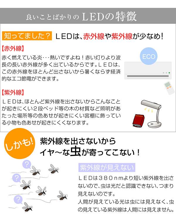 LED���� ����ʤ����糰����