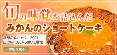 オレンジではなく、「みかん」にこだわり作りました☆みかんのショートケーキ