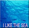 海が好きのカテゴリー