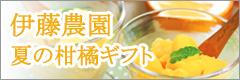 伊藤農園の柑橘ギフト