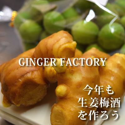 生姜梅酒の作り方